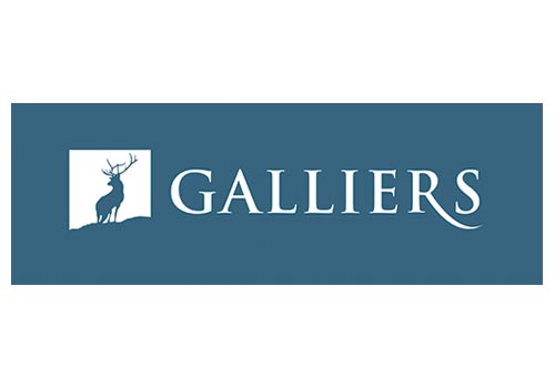 Galliers